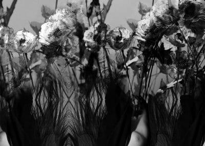Elizabeth-Houston-Gallery-Willhide-Melanie-Through-Sleep-and-Sorrow