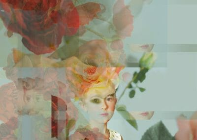 Melanie Willhide, Grace and Thorns, 2014, Archival pigment print, 30 × 26 inches, Edition of 5 + 2AP