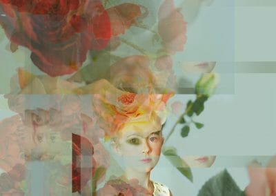 Melanie Willhide, Grace and Thorns, 2014, Archival pigment print, 30 × 26 inches