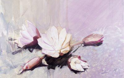 Eric LoPresti: Blooms