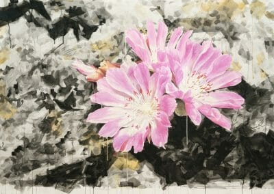 Eric LoPresti, Lewisia with crystal background, 2016, Framed watercolor on paper, 55 × 81 1/2 inches