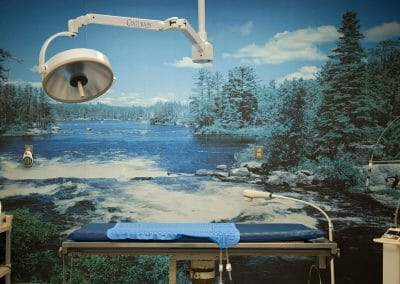 Mark Lyon, Flannery Animal Hospital, Operating Room, 2009, Archival pigment print, 24 x 36 inches