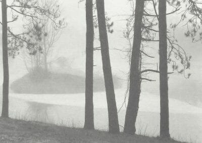 Tom Millea, Redding, Connecticut, 1980-89, Platinum palladium contact print, 3 10/16 x 4 11/16 in., Photographer's signature in pencil on recto.