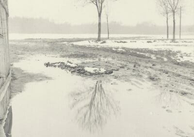 "Josef Sudek, Tree and Snow, Vintage silver gelatin print, 4 5/16 x 3 1/4 in., Photographer's stamp, ""Foto Sudek, Praha III., Ujezd 20.""; annotated ""192"" on verso."