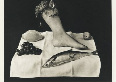 Joel-Peter Witkin, Still Life, Mexico, 1992, Platinum print, printed in 2003, 14 x 10 3/4 inches